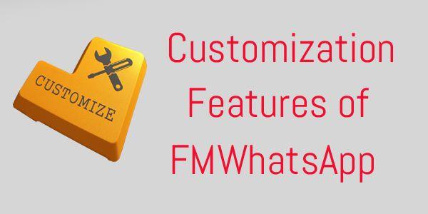 Customization Features of FM WhatsApp